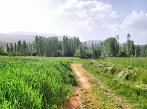 Afyon Kızılören Belediyesi